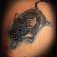 Neo traditional style colored scapular tattoo of small cute mouse