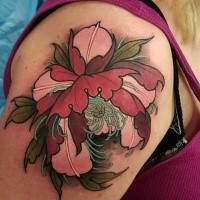 Neo traditional style colored shoulder tattoo of beautiful flower