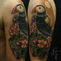 Neo traditional style colored shoulder tattoo of beautiful bird and flowers