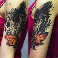 Neo traditional style colored shoulder tattoo of owl with maple leaf