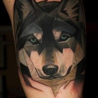 New school style colored beautiful dog face tattoo
