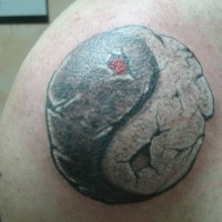 New yin yang