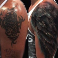 Nice 3D like colored feather wing tattoo on shoulder area