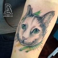 Schöne Katze mit grünen Augen Tattoo am Unterarm mit grünem Dunst