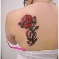 carino combinazione grande rose con chiave musicale tatuaggio su spalla