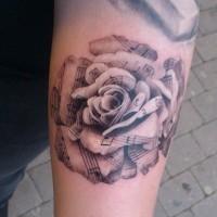 bellissima rosa particolare molto dettagliata bianco e nero tatuaggio su braccio