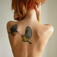 Tatuaggio bellissimo sulla schiena due uccelli colorati