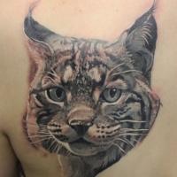 bel ritratto unico di lince tatuaggio sulla scapola