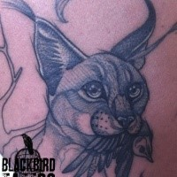 Old looking black ink tattoo of caracal with little bird