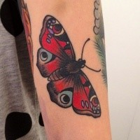 Old school style colored arm tattoo of natural looking beautiful butterfly