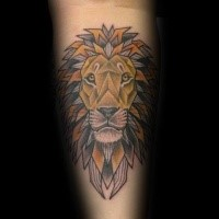 Old school style colored forearm tattoo of lion head