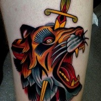 Old school style colored thigh tattoo of lion head with dagger