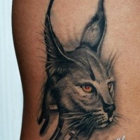 Original art style colored tattoo of caracal with yellow eyes