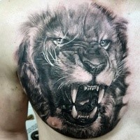 Photo like realistic chest tattoo of angry lion portrait