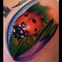 Photo Realistic ladybug tattoo