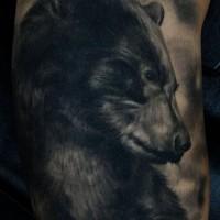 Tatuaggio carino sul braccio la testa dell'orso