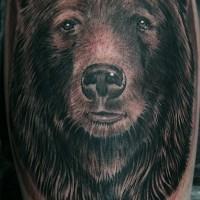Porträt eines Grizzlybären Tattoo