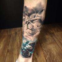 ritratto gatto persiano e cavaliere di scacchi tatuaggio