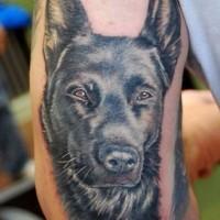 bellissimo pastore tedesco tatuaggio su gomito