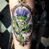 bel cardi viola in cornice scozzese tatuaggio su braccio