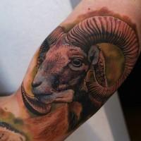 Ram face tattoo for man