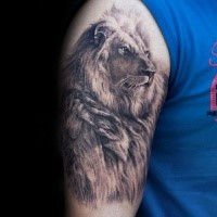 Real photo like colored shoulder tattoo of steady lion