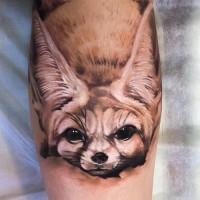 Tatuaje en la pierna, cachorro de zorro precioso con orejas largas
