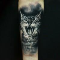 Realismus Stil schwarzes und weißes Unterarm Tattoo mit der Katze