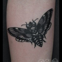 Realism style black ink arm tattoo of butterfly stylized with human skull