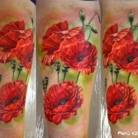 Realism style colored arm tattoo of wonderful flowers