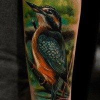 Realism style colored arm tattoo of beautiful bird