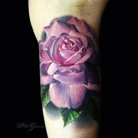 Realism style colored arm tattoo of big pink rose
