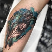 Realism style colored leg tattoo of big turtle