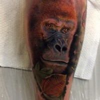 Realism style colored leg tattoo of big monkey with leaves
