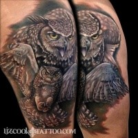 Realism style colored shoulder tattoo of flying owl