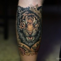 Realism style colored tattoo of tiger with crown and lettering