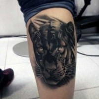 Realismus Stil detailliertes schwarzes Panther Tattoo am Beinmuskel
