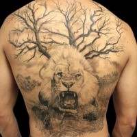 Realism style lifelike whole back tatto of desert tree with roaring lion
