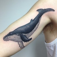 Realistic blue and black whale tattoo on half sleeve