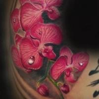 Tattoo realistischem Ast der roten Orchidee mit Tautropfen Tattoo