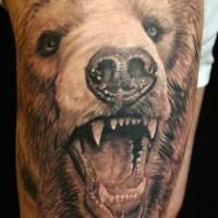 Realistic head of brown bear tattoo