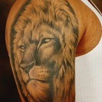 Realistic lion head tattoo on shoulder for men