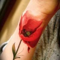 Realistische rote Mohnblume Tattoo am Handgelenk