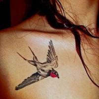 realistico uccello rondine tatuaggio disegno per ragazza