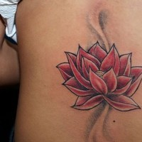 Red lotus flower tattoo on back