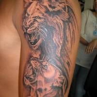 Tatuaje En El Brazo León Y Leona De Color Gris Tattooimagesbiz