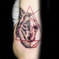 Separated creepy looking arm tattoo of animal skull with wolf head