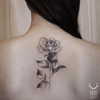 Simple designed black ink painted by Zihwa back tattoo of rose