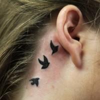 tre piccoli uccelli neri tatuaggio sotto orecchio per ragazze