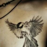 Tatuaggio sul petto il passerotto